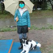 MIX犬の競技会入賞